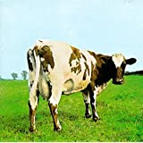 Pochette Atom Heart Mother