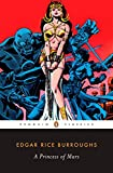 A Princess of Mars by Burroughs, Edgar Rice - Book cover from Amazon.co.uk
