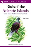 Field Guide to the Birds of the Atlantic Islands: Canary Islands, Madeira, Azores, Cape Verde (Helm Field Guides S.)