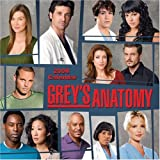 Grey's Anatomy: 2008 Wall Calendar