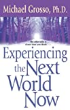 Michael Grosso, Ph.D. Experiencing the Next World Now