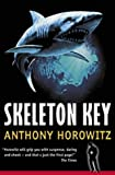 Anthony Horowitz, Skeleton Key