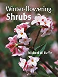 Amazon book - Winter-Flowering Shrubs