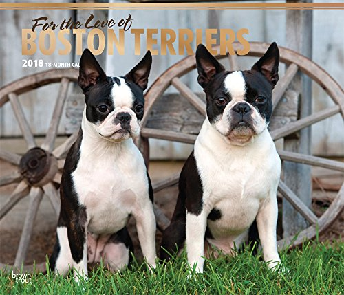 For the Love of Boston Terriers 2018 Calendar
