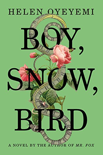 Boy Snow Bird cover