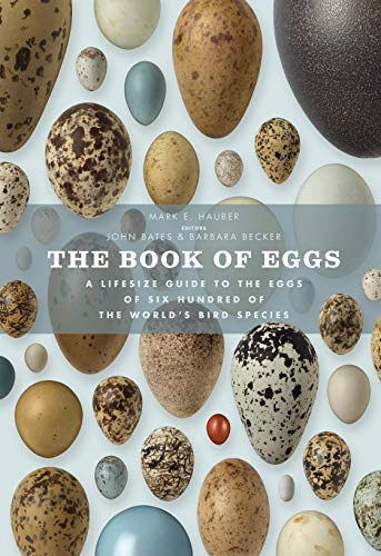 Book of eggs a life-size guide to the eggs of six hundred of the world's bird species /anglais