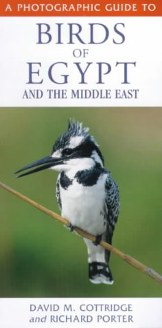 David Cottridge & Richard Porter, A Photographic Guide to Birds of Egypt  (Pied Kingfisher)