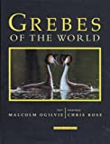 Malcolm Ogilvie. Illustrated by Chris Rose. Grebes of the World. Bruce Coleman 2002