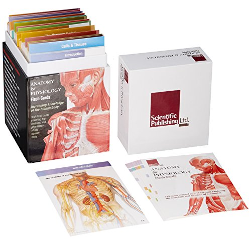 Anatomy & Physiology Flash Cards: Increasing Knowledge of the Human Body