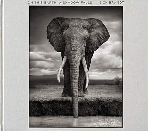 On This Earth, a Shadow Falls par Nick Brandt