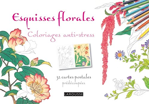 Esquisses florales coloriages cartes postales