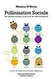 Pollinisation sociale-visual