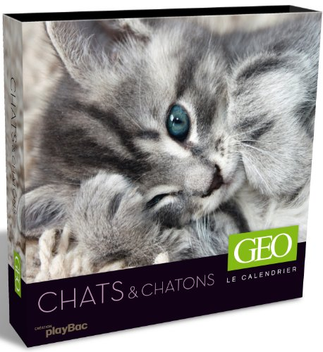 Le calendrier Géo : Chats & chatons