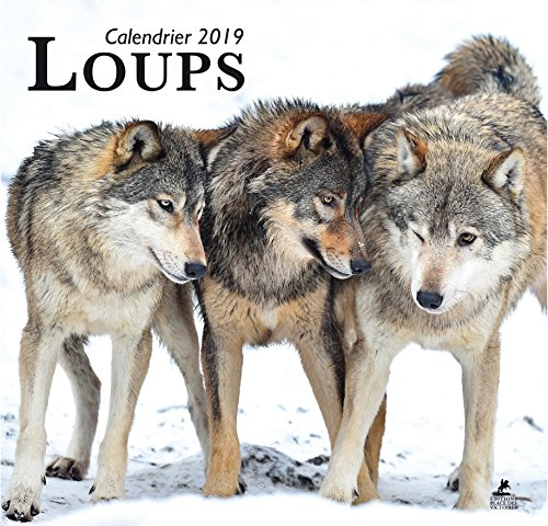 Loups calendrier 2019