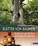 Bume: Bltter von Bumen: Heilkraft und Mythos einheimischer Bume
