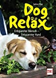 Hunde: Dog Relx: Entspannter Mensch - Entspannter Hund