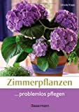 Zimmerpflanzen: Zimmerpflanzen problemlos pflegen