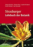 Botanik: Strasburger - Lehrbuch der Botanik