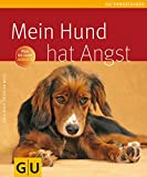 Hunde: Mein Hund hat Angst