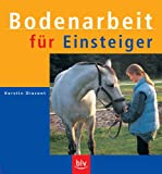 Dressurreiten: Bodenarbeit fr Einsteiger