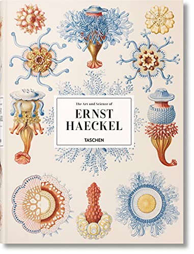 XL-Haeckel par Rainer Willmann, Julia Voss