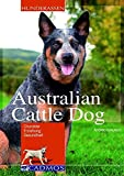 Hunde: Australian Cattle Dog: Charakter, Erziehung, Gesundheit