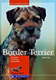Hunde: Border Terrier: Charakter, Erziehung, Gesundheit