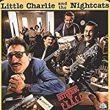 Little Charlie & The Nightcats, Disturbing the Peace