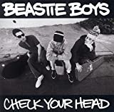 Beastie Boys, Check Your Head