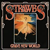 Strawbs, Grave New World