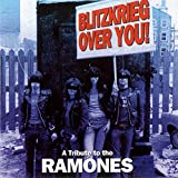 Albumcover für Blitzkrieg Over You: A Tribute to the Ramones