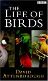 David Attenborough's Life Of Birds