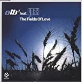 album art to The Fields of Love (feat. York)