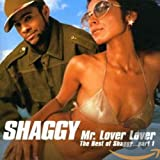 Shaggy, The Best of Shaggy Vol.1