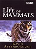 Life of Mammals