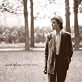 David Sylvian, Brilliant Trees