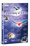 Journey Of Life