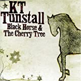 album art to Black Horse and the Cherry Tree