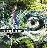 Pendulum, Hold Your Colour