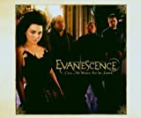 Evanescence, Call Me When You're Sober