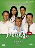 In aller Freundschaft - Staffel 10, Teil 1 (6 DVDs)