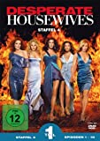 Staffel 4, Teil 1 (3 DVDs)
