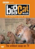 Big Cat Week - Series 4