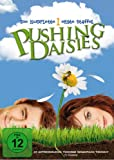 Pushing Daisies - Staffel 1 (3 DVDs)