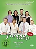In aller Freundschaft - Staffel 11, Teil 1 (6 DVDs)