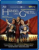 Humperdinck: Hansel Und Gretel (Live Recording From The Anhaltisches Theater Dessau 2007) [Blu-ray] [2009]