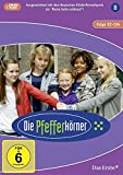 Staffel  8 (2 DVDs)