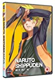 Naruto Shippuden - Collection Vol.10