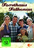 Staffel 19 (3 DVDs)