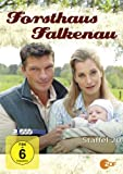 Staffel 20 (3 DVDs)
